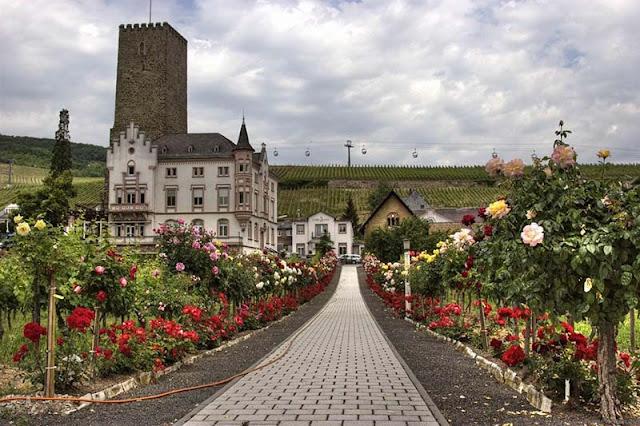 Rüdesheim no vale do Reno
