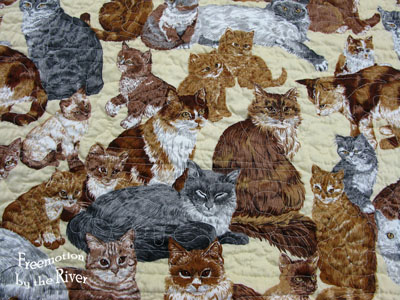 Quilt on kitty backing