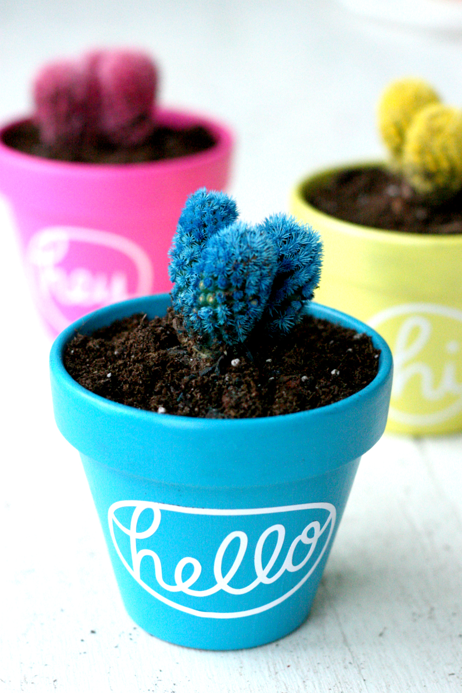 10 Silhouette CAMEO Projects for Beginners + a tutorial featured by Top US Craft Blog + The Pretty Life Girls + Hello Cactus Planters