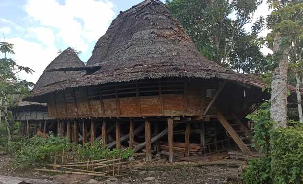 Jejak Arsitektur Kuno Rumah Adat Nias di Desa Tumori Gunungsitoli