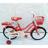 Sepeda Anak Evergreen CTB EG1251 16 Inci