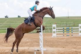 salto de cavalos