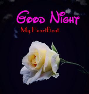 Latest Beautiful Good Night Wallpaper Free Download %2B61