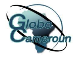 Avis de recrutement: Gestionnaire de stock - GLOBO CAMEROUN