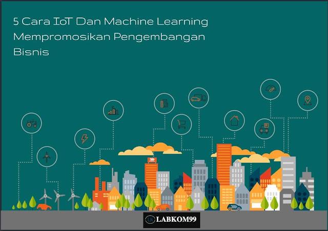 5 Cara IoT Dan Machine Learning Mempromosikan Pengembangan Bisnis