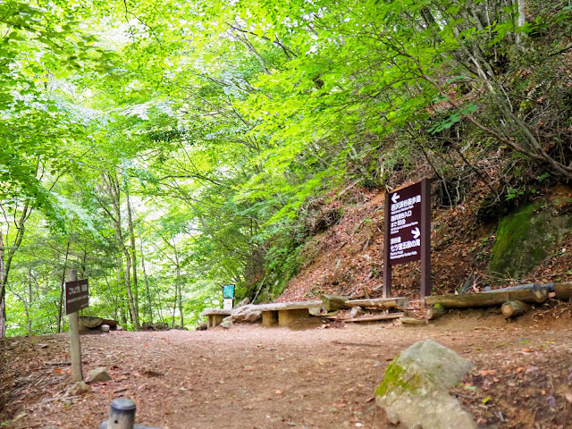 西沢渓谷 歩道終点