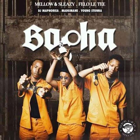 Young Stunna, Felo Le Tee, Mellow & Sleazy – Bopha feat. Kabza De Small & Madumane