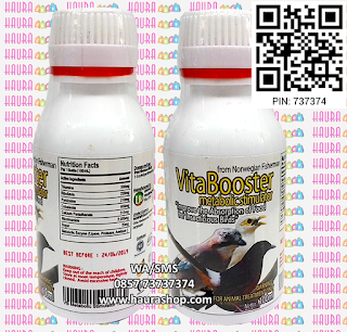 VB-MS adalah produk suplemen import berkualitas dari Norwegia. VBMS meningkatkan penyerapan makanan untuk burung pemakan serangga.