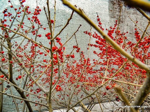 Jardim no High Line, Nova York