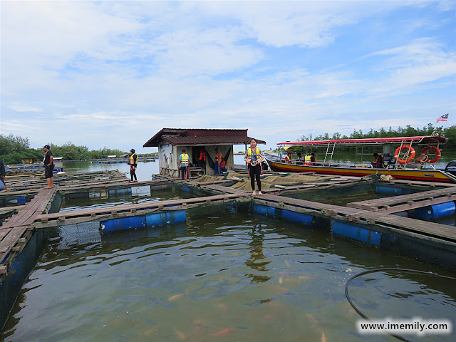 Visiting the local fish farm @ Setiu