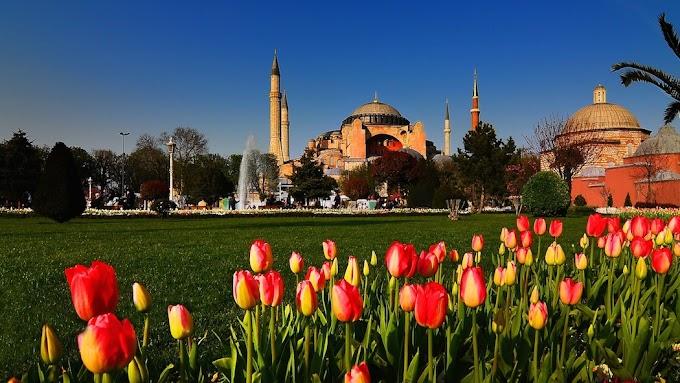 Turkey 2016 Tulip Festival