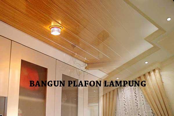 HARGA PASANG PLAFON PESAWARAN LAMPUNG PER METER 2020