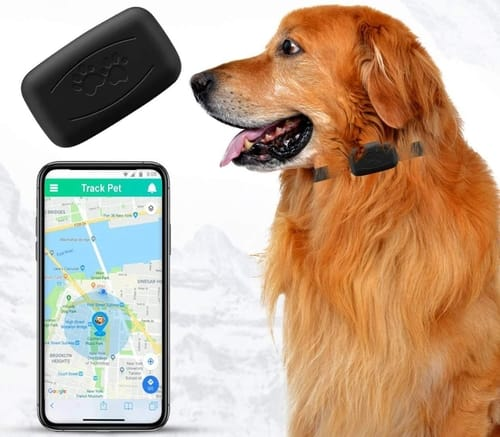 Review NACRL Pet Real-Time GPS Tracker Collar Device