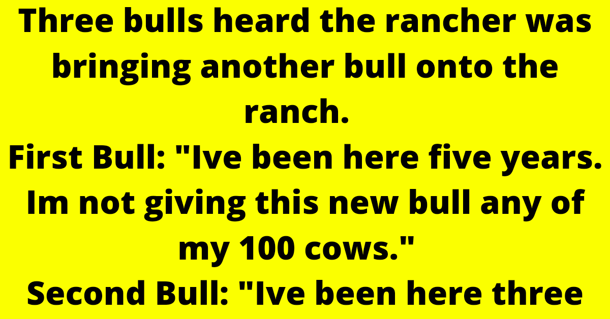 """Three bulls heard the rancher was bringing another bull onto the ranch.      First Bull: """"Ive been here five years. Im not giving this new bull any of my 100 cows.""""      Second Bull: """"Ive been here three years and have earned my right to 50 cows."""