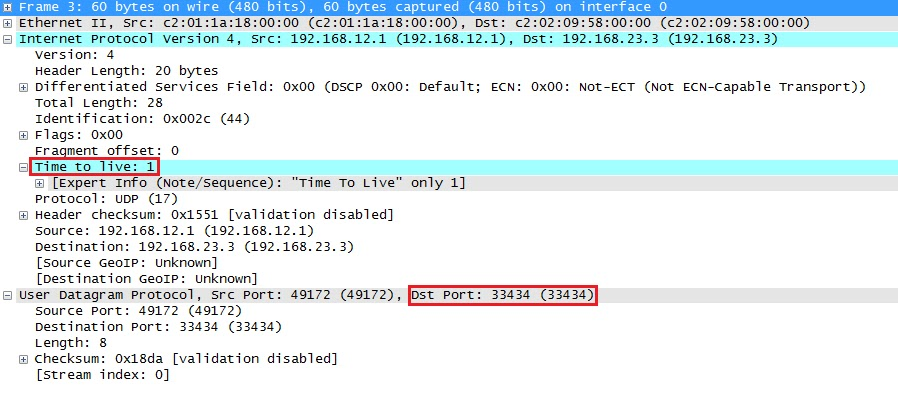 Wireshark Capture Traceroute UDP Probe