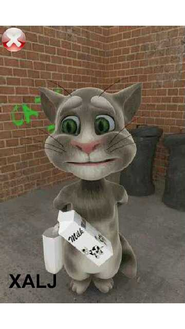 Download Talking Tom Cat for Nokia 5800, N97, X6, 5530, 5235 and N8