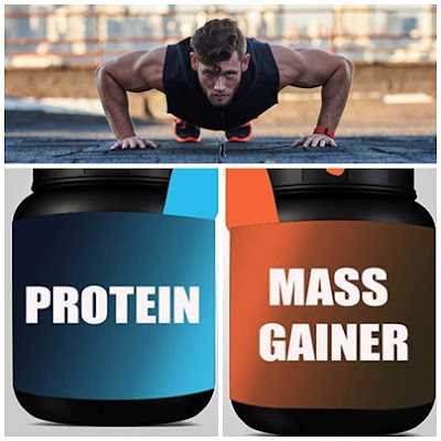 Difference Between Mass Gainer And Protein