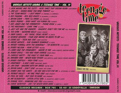 Various Artists - Teenage Time Volume 14