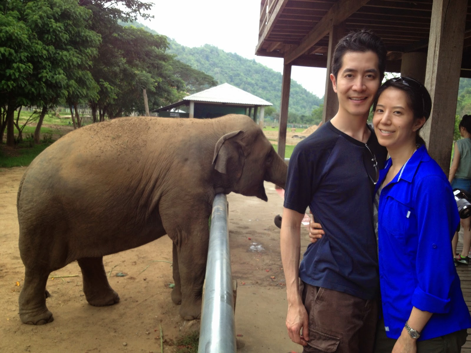 Chiang Mai - Getting ready to feed the elephants