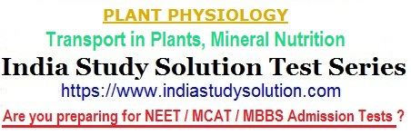 India Study Solution - image