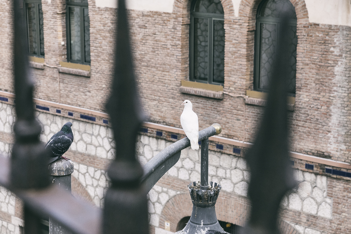 Malaga, Spain, visitspain, Andalucia, Espanja, Costa del Sol, aurinkorannikko, kaupunkikuvaus, streetphotography, valokuvaus, photography, photographer, valokuvaaja, Frida Steiner, Visualaddict, Visualaddictfrida,