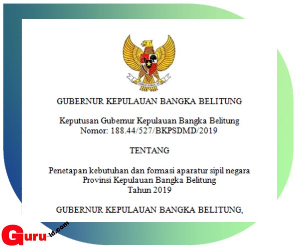 gambar lengkap rincian FORMASI CPNS BANGKA BELITUNG 2019