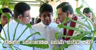 Wasantha Senanayaka to make a leap towards Gota?