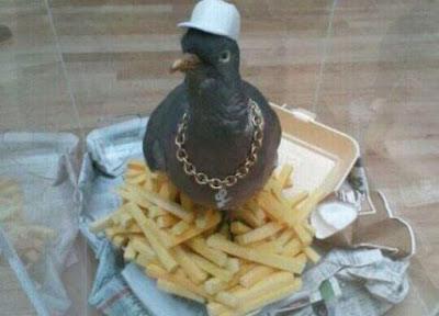 Komischer Vogel mit Hut und Kette sitze auf Essen