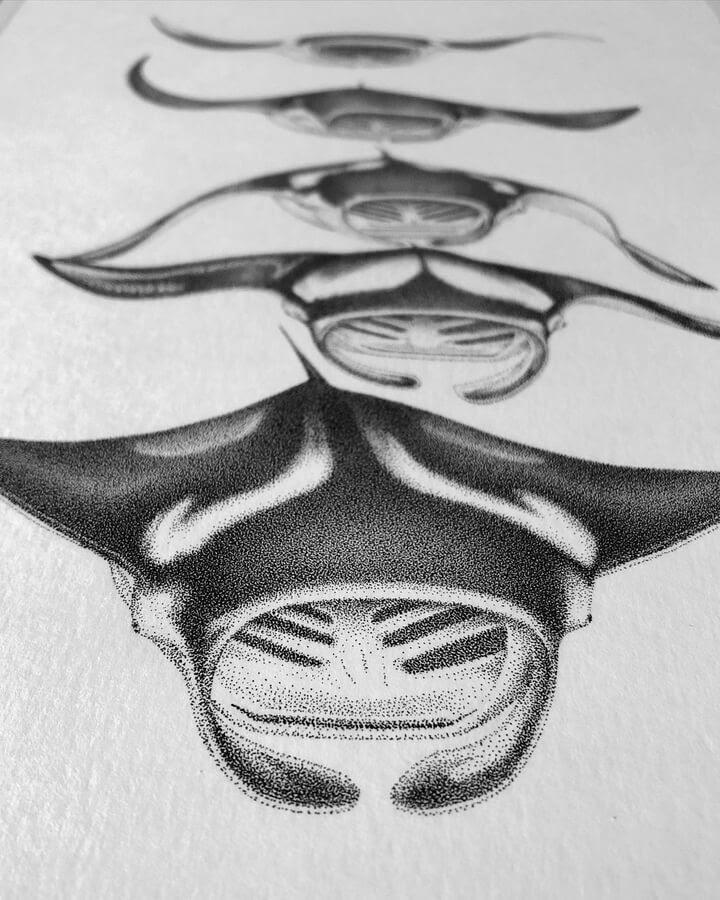 03-Manta-Ray-María-Lecanda-www-designstack-co