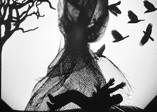 Shadow image by Corina Duyn