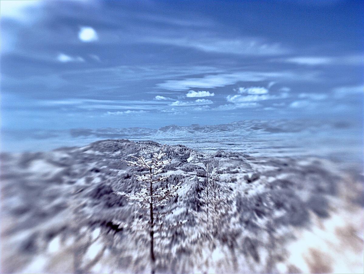 Wintereinbruch im Rheintal