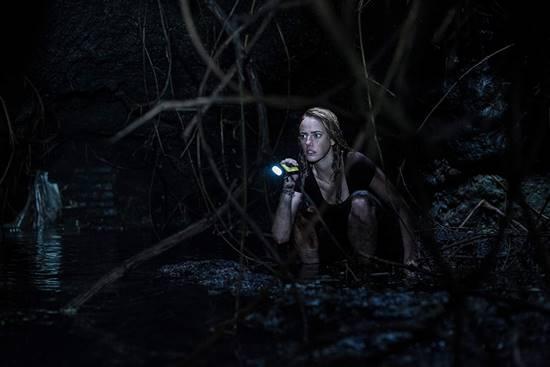 Review Film Crawl (2019), Menegangkan dan Memacu Adrenalin
