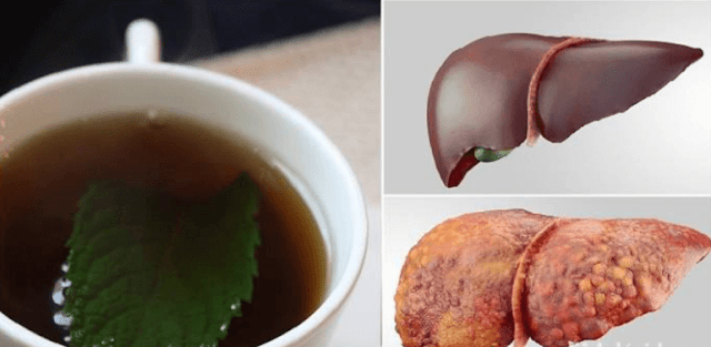 Top Eight Night Beverages To Detox Your Liver As Well As Burn Fat!