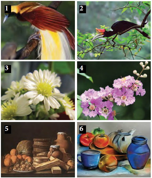 Seni Budaya Menggambar Flora Fauna Dan Alam Benda Bab Seni Rupa Harmoni Seni