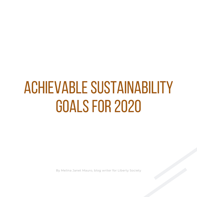 Achievable Sustainability Goals for 2020