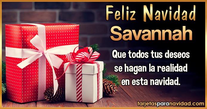 Feliz Navidad Savannah