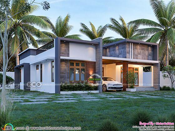 modern flat roof single floor home design