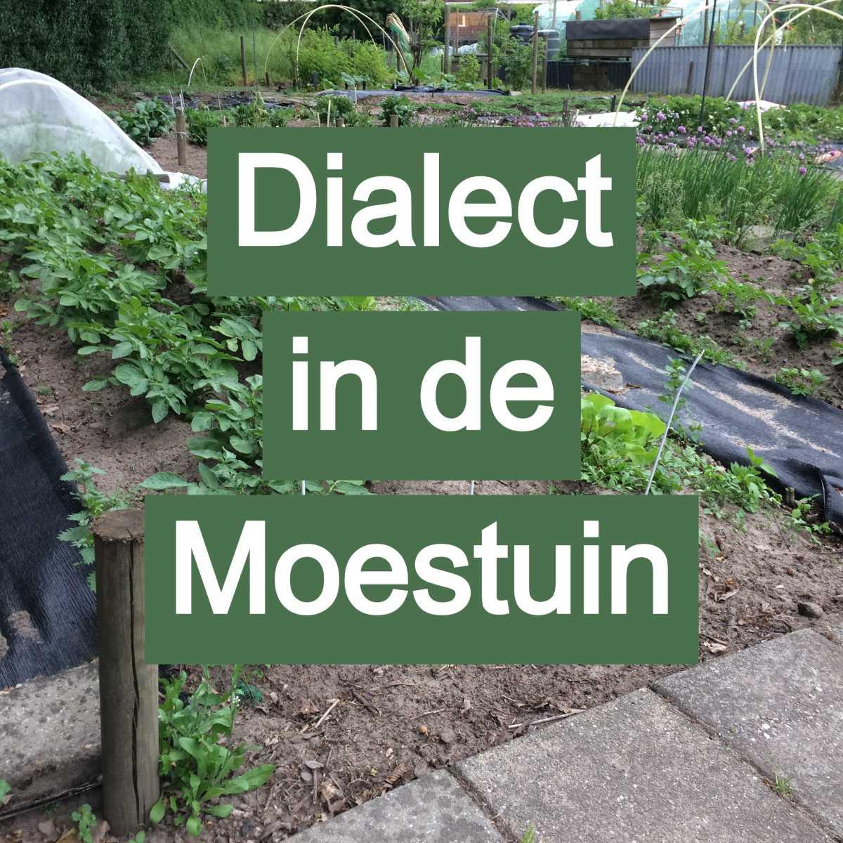 dialect moestuin land van maas en waal