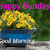 Top 10    Good Morning Happy Sunday images Photos , greetings, pictures for Whatsapp