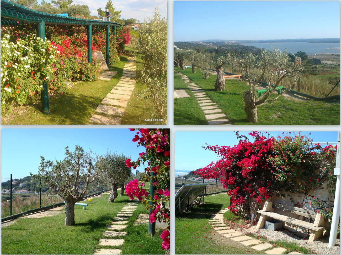 beautiful garden, located at the properties' lower level