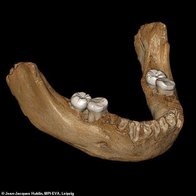 Denisovans Jawbone