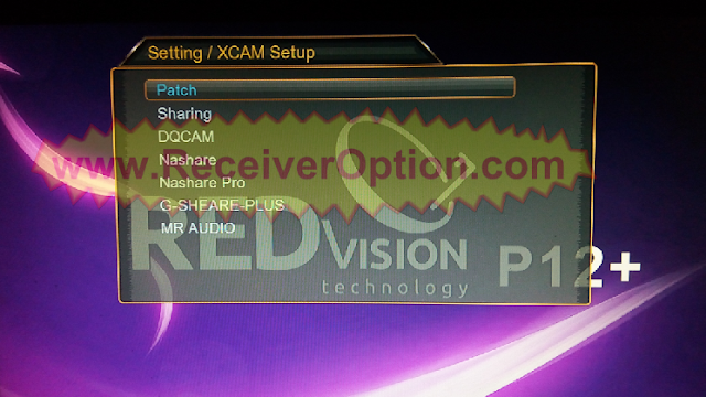 REDVISION P12 PLUS HD RECEIVER NEW SOFTWARE WITH G SHARE PLUS OPTION