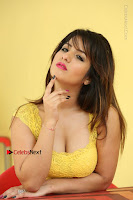 Cute Telugu Actress Shunaya Solanki High Definition Spicy Pos in Yellow Top and Skirt  0609.JPG