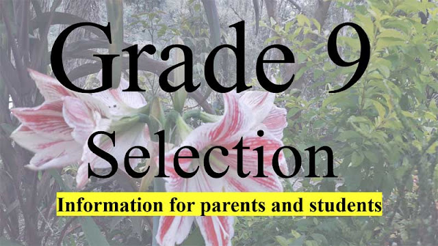 Grade 11 selection info and updates
