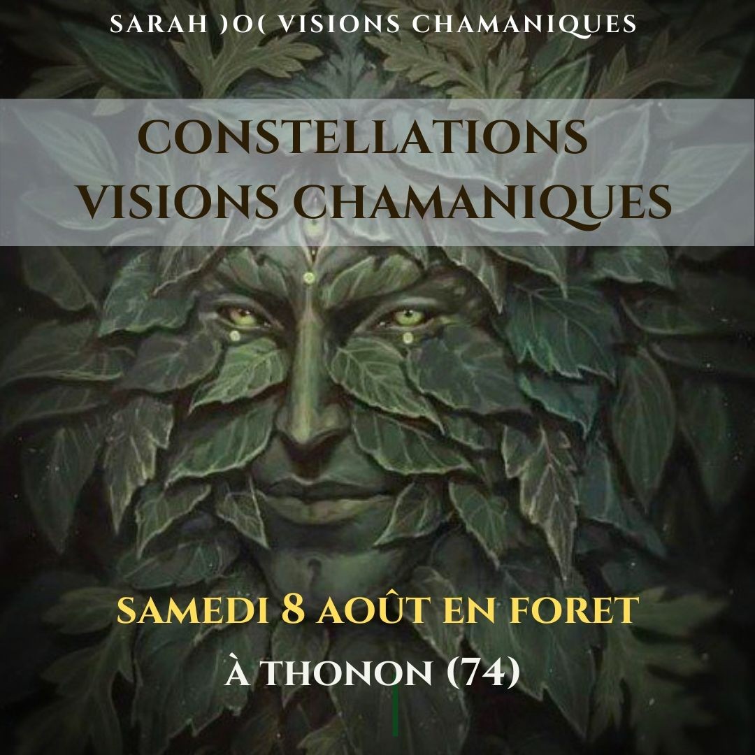 Constellations Visions Chamaniques en foret