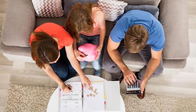 La importancia de la economía doméstica complementaria (EDOCO)