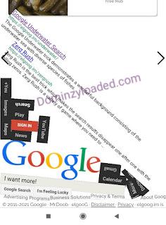 Google Gravity page