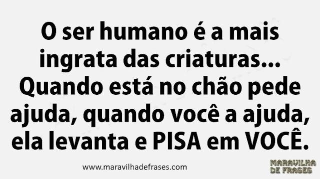 O ser humano é a mais ingrata das criaturas... Quando está no chão pede ajuda, quando você a ajuda, ela levanta e pisa em você.