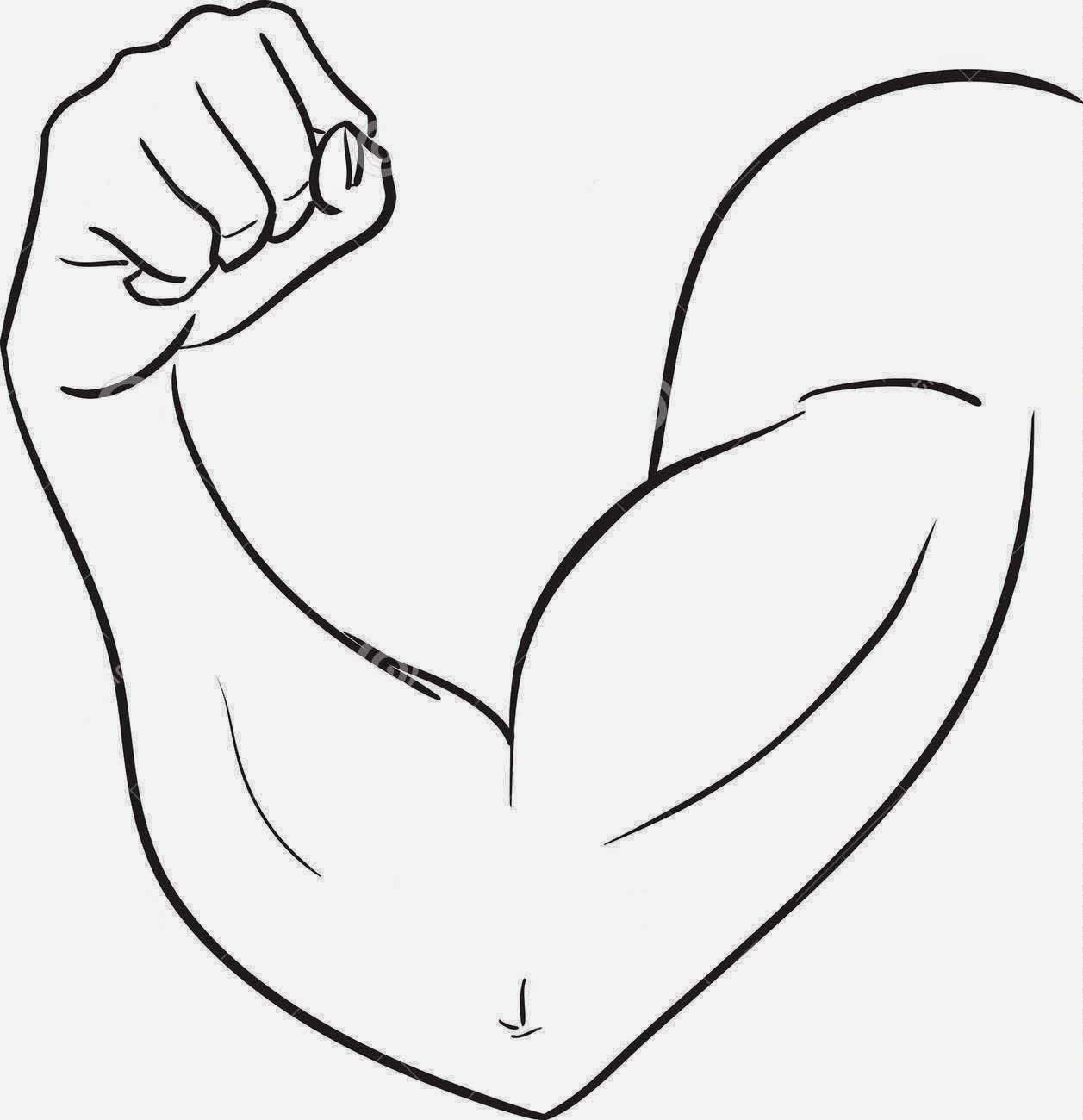 Two Arm Muscle Coloring Coloring Pages