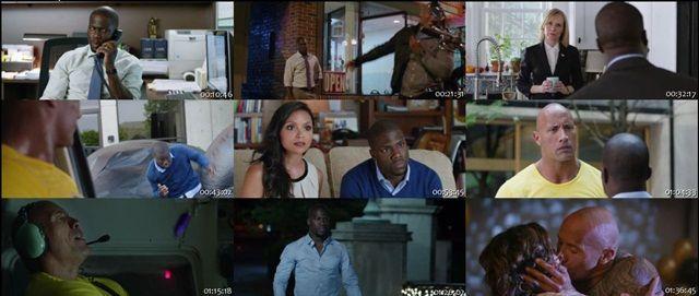 Un Espía y Medio (2016) DVDRip Latino